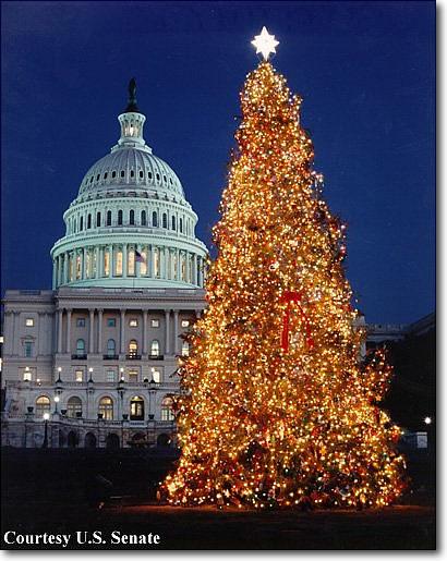 Christmas senate